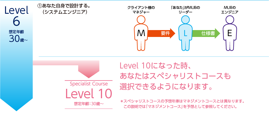Level.6/想定年齢:30歳〜/予想年俸350万円