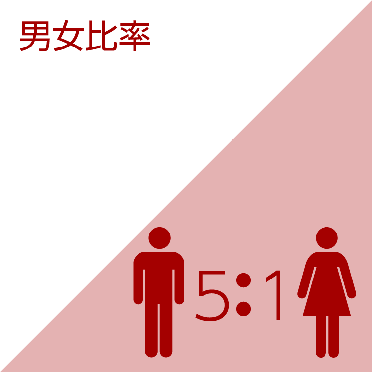 男女比率/5:1
